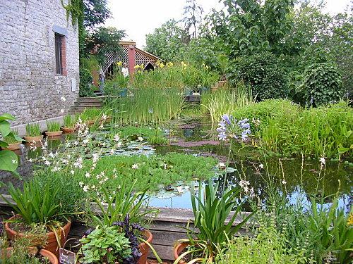 Arr tez de raser les parterres et de massacrer les plantes - Le petit jardin wittenberge colombes ...