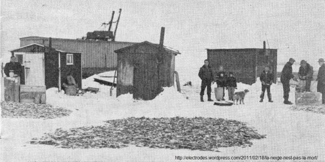 Pêche d'hiver aux poulamons, ou aux «petits poissons des chenaux» dans la région de la ville de Trois-Rivières au Québec - ou encore, la «pêche aux petites morues». Photo prise au Québec, vraisemblablement au début des années 1950s. Elle provient du journal Le Nouvelliste de Trois-Rivières et elle est reproduite dans Le Jeune Naturaliste de f'évrier 1954.