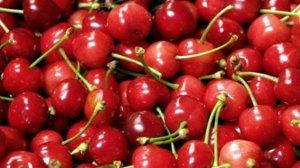 Cerises__Cherries__01