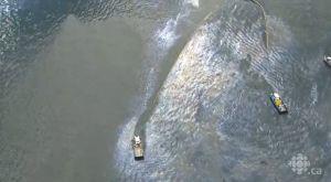 Déversement de produits pétroliers le 1er septembre 2013, Baie de Sept Iles, au Québec. Le 10 septembre, ça s'étendait sur 10 kms de côte, soit 1 km par jour.
