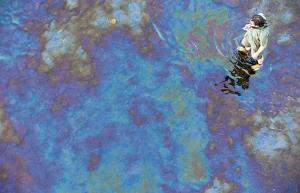 Petrole à la surface de la rivière Chaudière dans laquelle se déverse le lac Mégantic. Plusieurs semaines après la déversement catabolique du 6 juillet 2013. Photo Jacques Nadeau, Le Devoir.